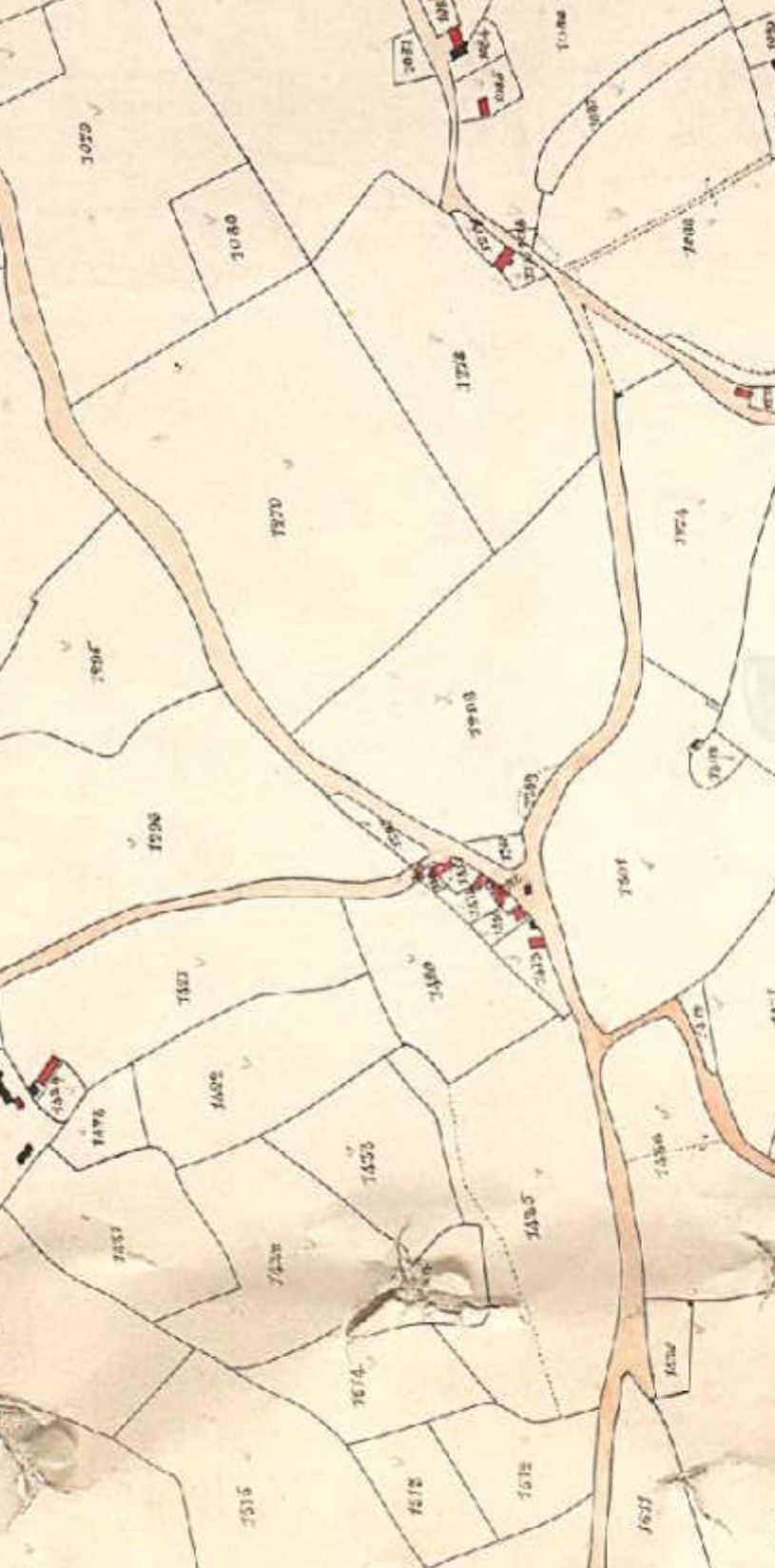 Tithe Map Broadwindsor coloured Coles Cross